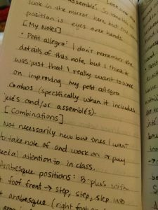writer's journal entry